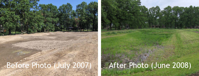 Wetland Construction - Before and After